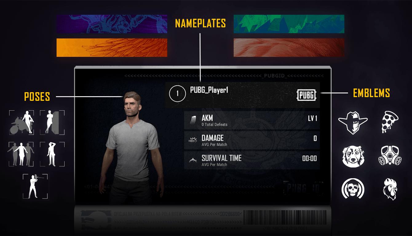 PlayerUnknown's Battlegrounds oyununun yeni özelliği olan PUBG ID nedir?